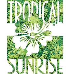 Tropical sunrise vector