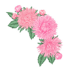 Beautiful bouquet with pink asters and leaves vector