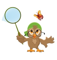 Owl Catches butterfly Bird and butterfly net vector image vector image