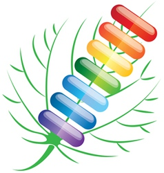 colored pills capsules vector image