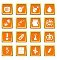 Gmo icons set orange vector