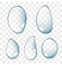 Transparent clear water realistic drops vector image