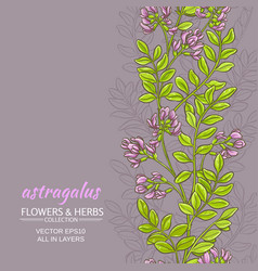Astragalus background vector