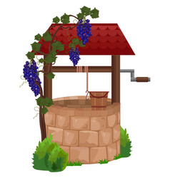 stone water well grapes vector image