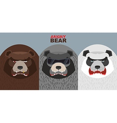 Set bad bears wild angry animals villains vector