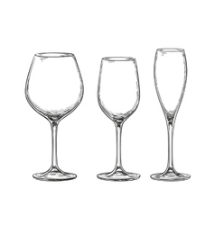 Set of empty wine glasses vector image vector image