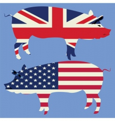 British and american pigs vector