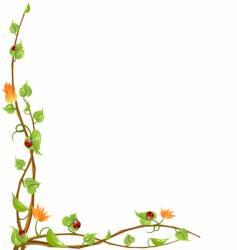 Nature vine vector
