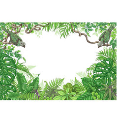 Tropical plants and birds frame vector