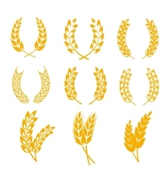 Rye wheat ears wreaths elements for bread vector image