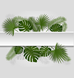 Green summer tropical header with exotic palm vector