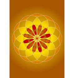 mandala of fire and light vector image