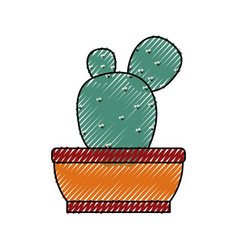 Cactus un the potted vector