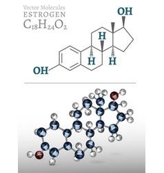 estrogen molecule image vector image