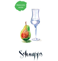 Schnapps glass filled with clear liquid and pear vector