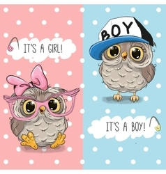 Owls boy and girl vector