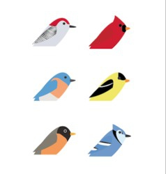 Various birds vector