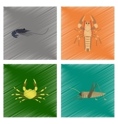 Assembly flat shading style shrimp vector