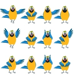 Flat set of macaw icons vector
