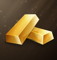 Two gold nuggets vector