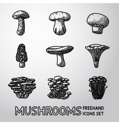 Set of freehand mushrooms icons - porcini vector
