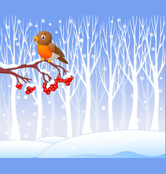Cartoon funny robin bird on the berry tree vector