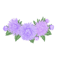 Beautiful bouquet with purple asters and leaves vector