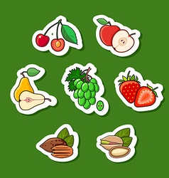 Set of fruits isolated vector image