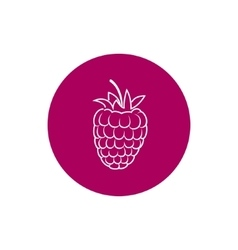 Icon raspberries in the contours vector