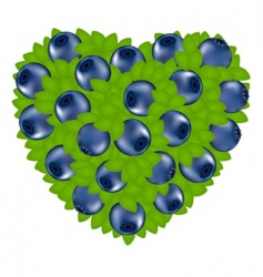 heart from bilberry vector image vector image