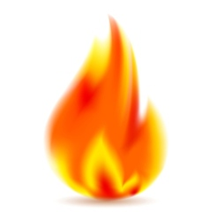 Fire bright flame on white background vector