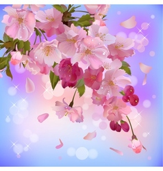 background with gentle sakura branch of flowers vector image