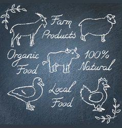 set of farm animals icons and lettering on vector image vector image