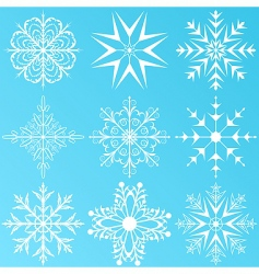Set variation snowflakes isolated vector