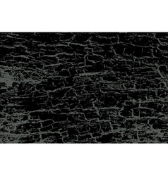 Black texture of bark vector