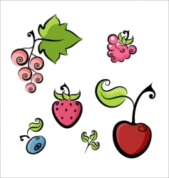 berries collection vector image