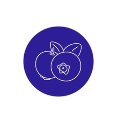 Icon blueberries in the contours vector
