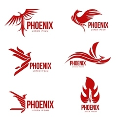 Set of stylized graphic phoenix bird logo vector