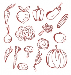 sketch of vegetables vector image vector image