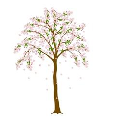 Blossom tree vector