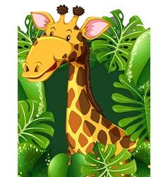 Giraffe in the woods vector