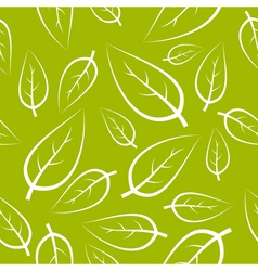 fresh green leafs texture vector image