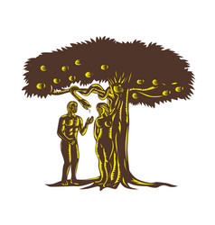 adam and eve apple serpent woodcut vector image