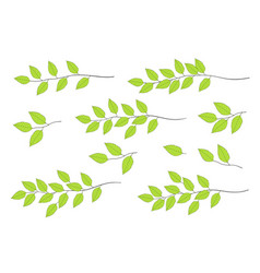 green tree branches set vector image