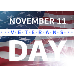 veterans day banner with us flag vector image