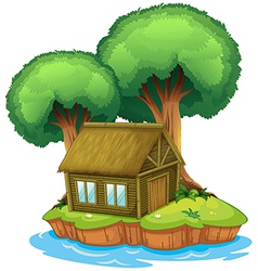 House on an island vector image