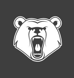 bear growl vector image