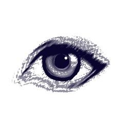 Human etched eye vector image