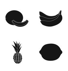 Melon banana pineapple lemonfruits set vector