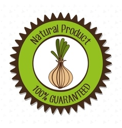 Natural product food vegetable vector